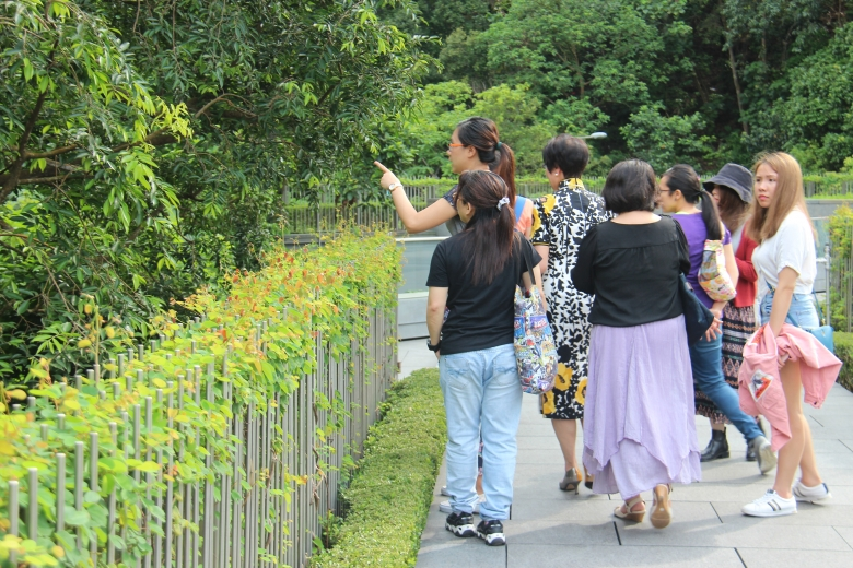 Docent Olivia Leung points out tree species along the center's Yasumoto Bridge.