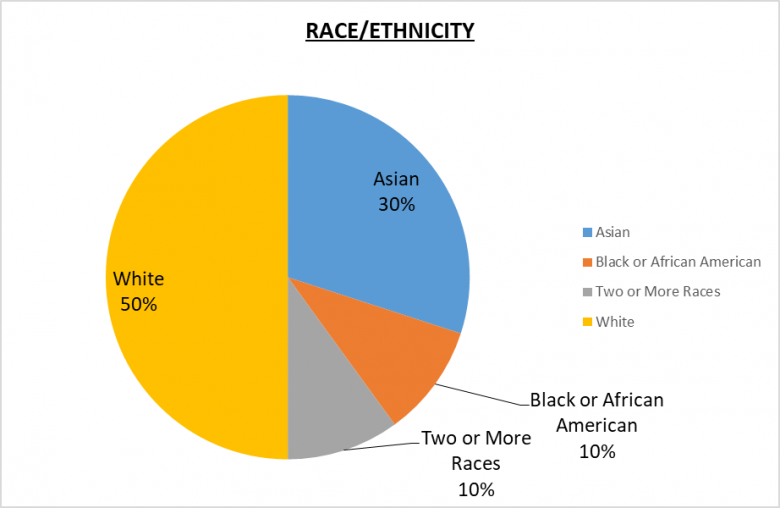 501(c)(3) Leadership Pie Chart Race/Ethnicity 50% White, 30% Asian, 10% Black or African American, 10% Two or more races