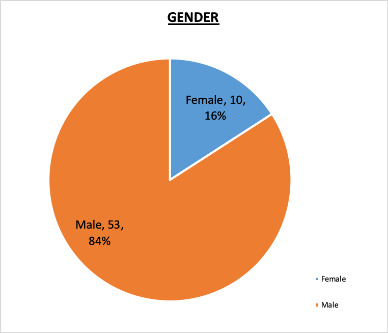 Board of Trustees Gender Pie Chart October 2020 84% Male, 16% Female